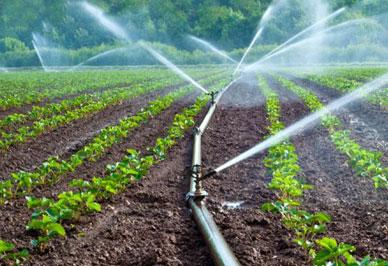 Irrigation System Repair