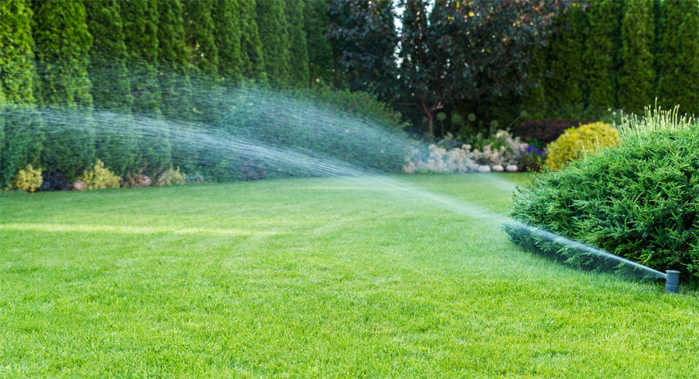 How Should I Irrigate My Lawn?